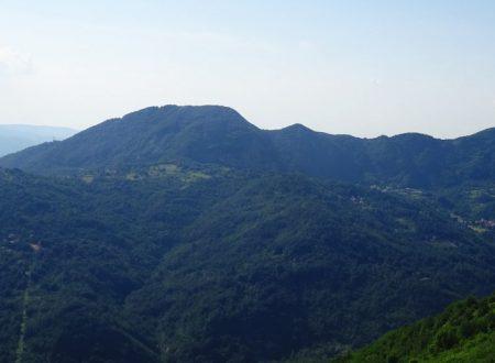Monte Maggio mt. 978