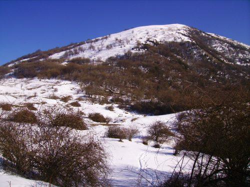 Monte Alpesisa mt. 989 da Creto
