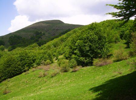 Monte Carmo e Poggio Rondino mt. 1642-1630