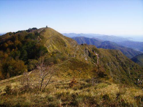 Monte Caucaso mt. 1245
