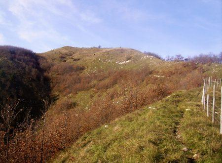 Monte Spina mt. 985