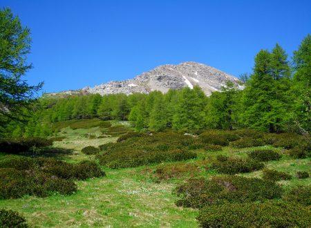 Monte Bertrand e Cima Missun mt. 2484-2356