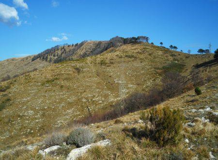 Monte Cordona mt. 801