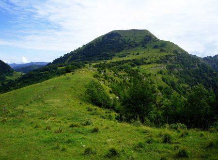 Monte Alpesisa mt. 984 da San Cosimo di Struppa