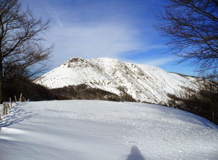 Monte Ragola mt. 1711