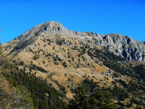 Monte Saccarello mt. 2200