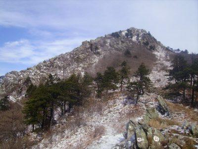 Monte Argentea mt. 1082