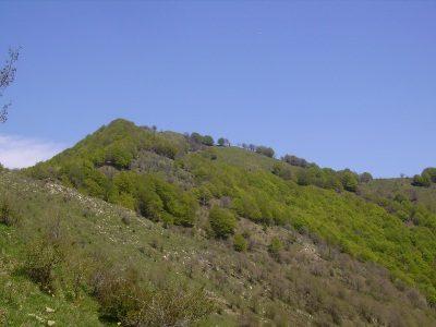 Monte Cremado mt. 1512