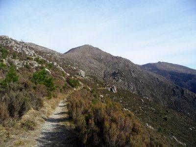 Monte Tardia di Ponente mt. 928