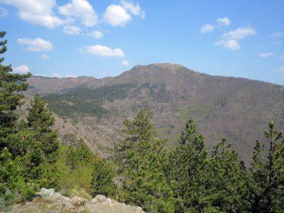 Monte Alpe di Maissana e Monte Pu mt. 1094-1001