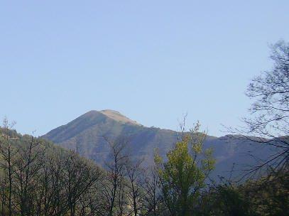 Monte Alfeo mt. 1651