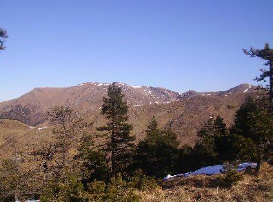 Monte Taccone  e Monte delle Figne mt. 1113-1172