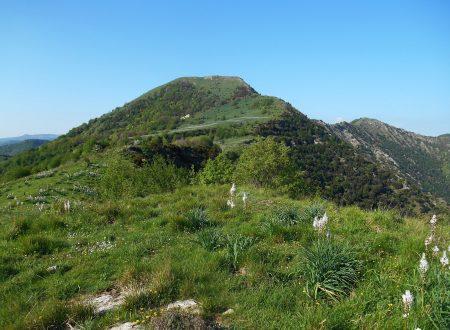 Monte Alpesisa e Monte Lago da San Martino di Struppa 984-942
